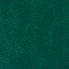 TORINO color: verde oscuro (VT0107)